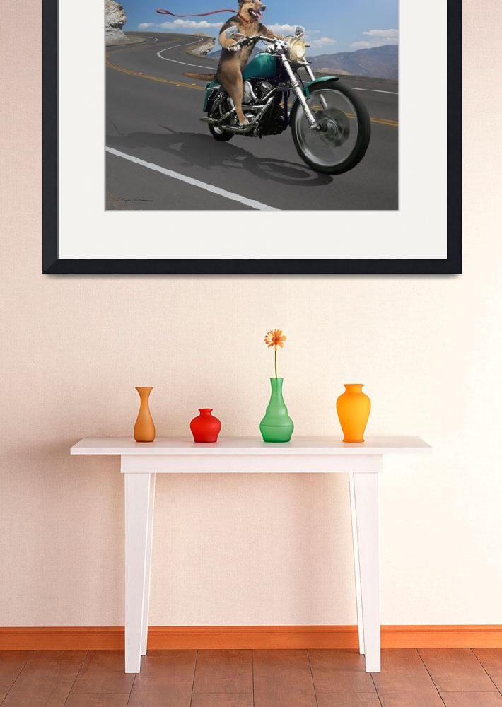 """""""German Shepard Dog Riding a Motorcycle&quot  (2010) by StephanieDRoeser"""