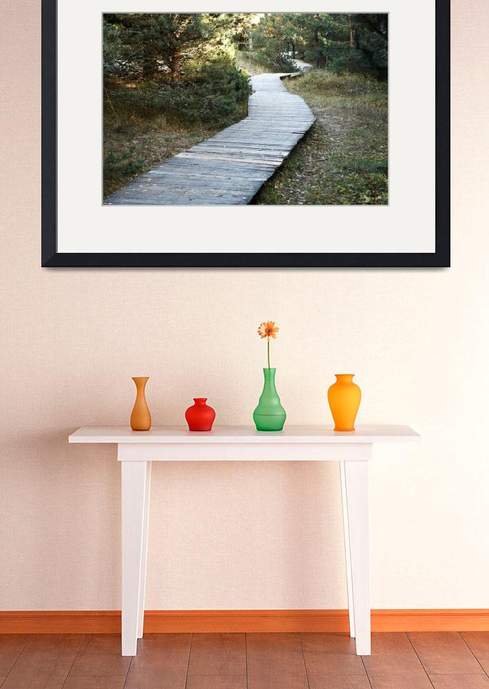 """""""wooden walkway in the forest""""  (2015) by deeprainbow"""