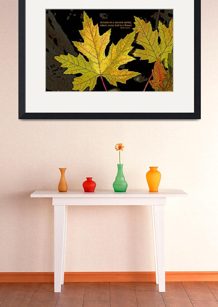 """""""Second spring maple leaves&quot  (2007) by eye4nature"""