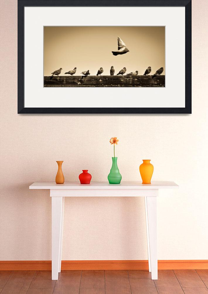 """""""Family Birds&quot  (2010) by RobertJohnson"""
