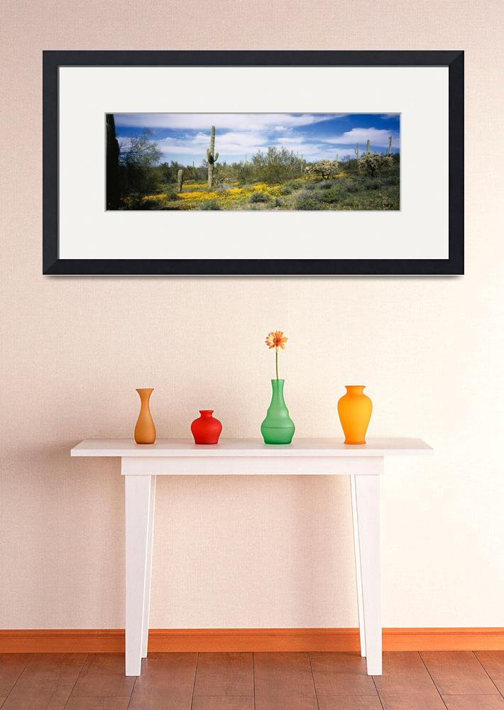 """""""Poppies and cactus on a landscape&quot  by Panoramic_Images"""