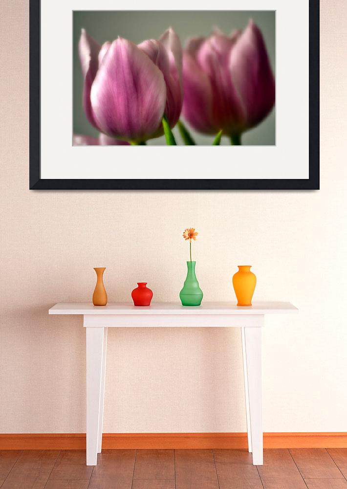 """Pink Tulips""  (2012) by LJdesigns"