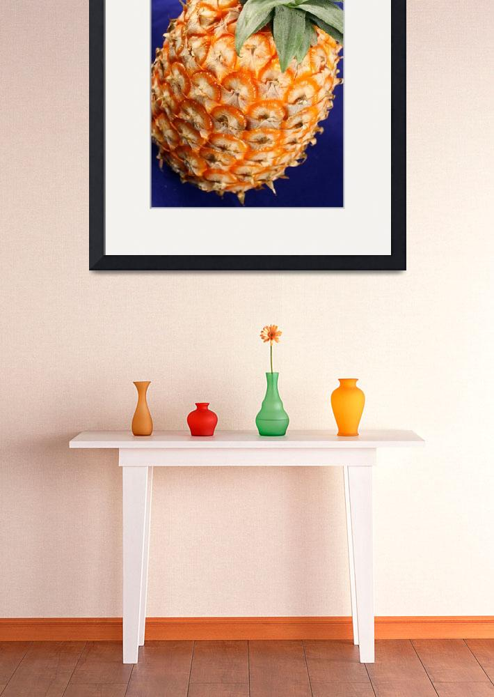 """""""Azores pineapple&quot  (2008) by gavila"""