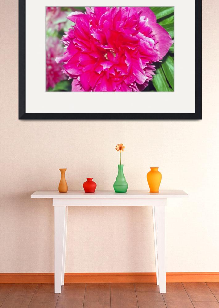 """""""Peony&quot  (2008) by Gillybix"""