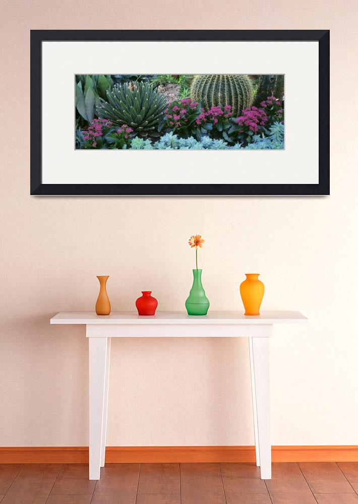 """""""Plants Flowers""""  by Panoramic_Images"""