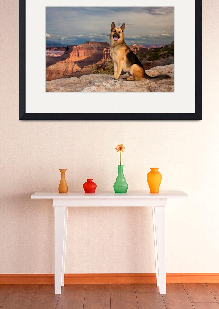 """""""Cody At The Canyonlands&quot  by pbk"""