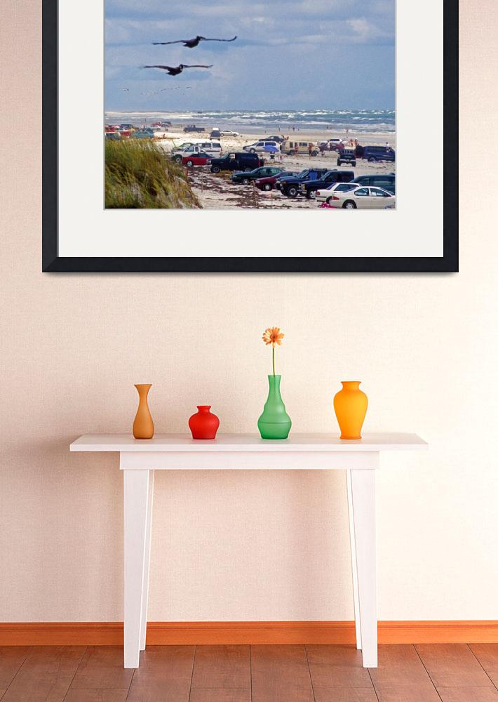 """""""St. Augustine Beach Parked Cars and Pelicans&quot  (2007) by kphotos"""