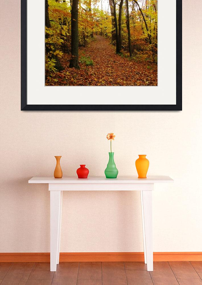 """Autumn Trail""  (2009) by mariehedtke"