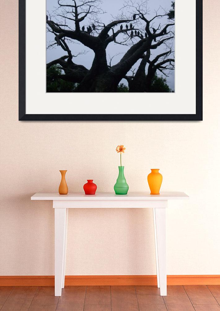 """""""Baobob Tree with Vultures""""  by delilahbelle"""