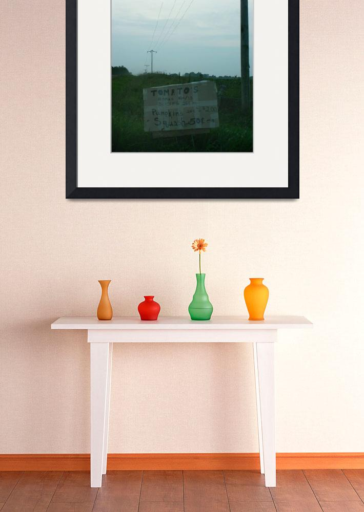 """""""Tomatoes for sale&quot  (2009) by imaginativeimagery"""