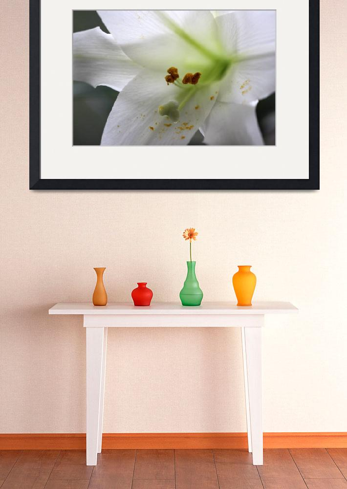 """Easter Lily Macro 2016&quot  (2016) by KsWorldArt"