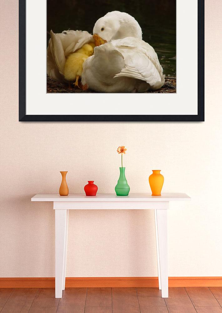 """""""Baby Chick with Mother Duck&quot  (2006) by Rayfawn"""