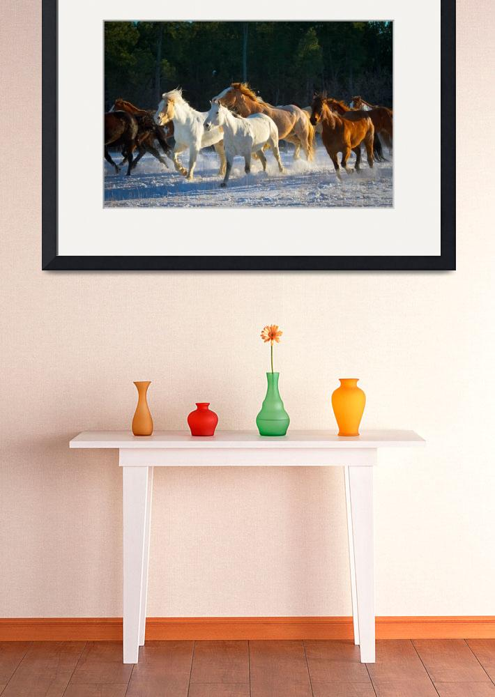 """Wyoming Horses&quot  (2012) by Inge-Johnsson"