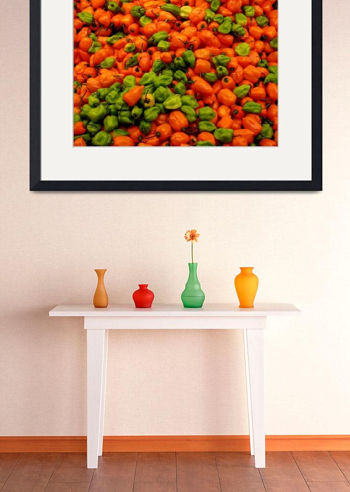 """""""Red and Green Peppers&quot  (2009) by jeco"""