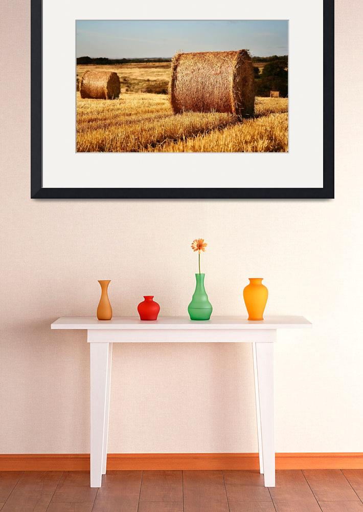 """""""autumnal fields&quot  by photoberry"""