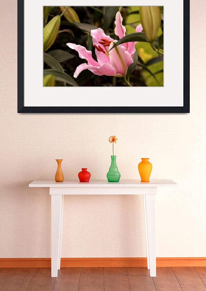 """""""Oriental Lily Beauty&quot  (2015) by LightHeart"""
