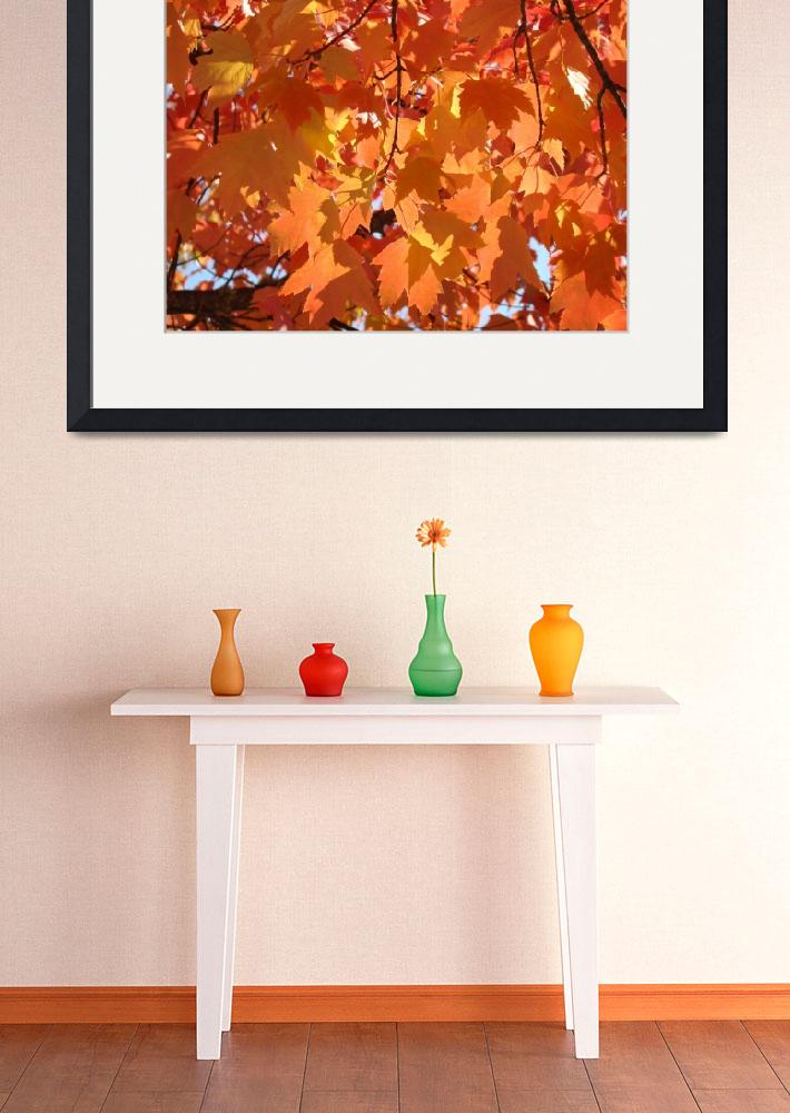 """Fall art prints Orange Autumn Tree Leaves Baslee&quot  (2010) by BasleeTroutman"