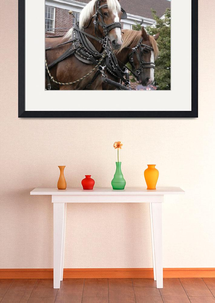 """""""Team of Horses in Parade&quot  (2011) by ClotheslineArt"""