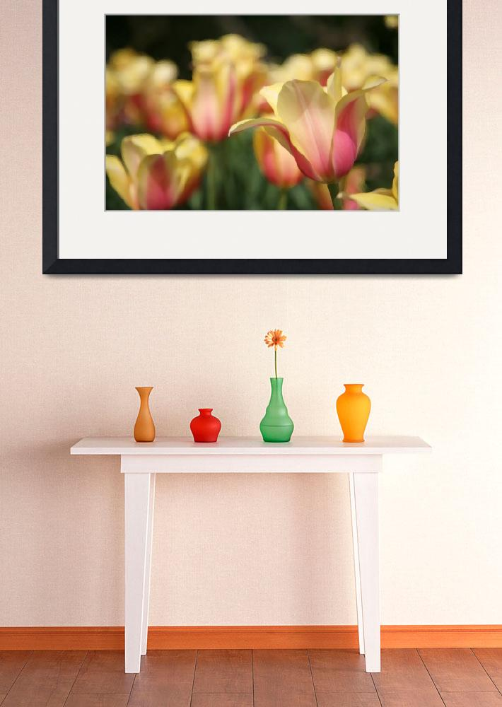 """""""Tulips in Painting&quot  by LeighSkaggsPhotography"""