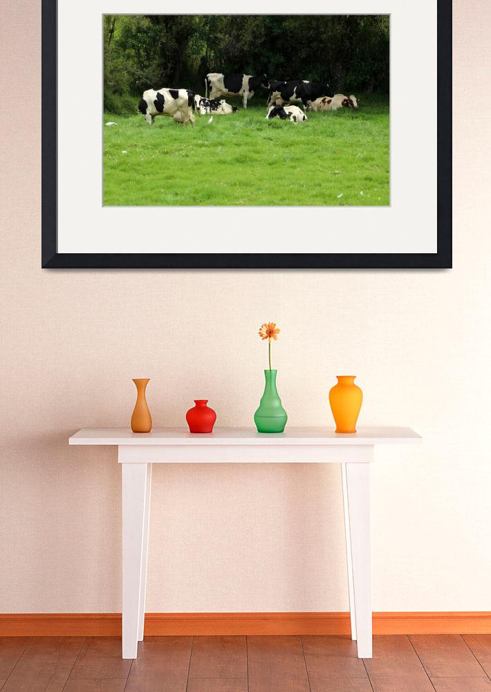 """""""Herd of Holstein Cows&quot  (2014) by rhamm"""