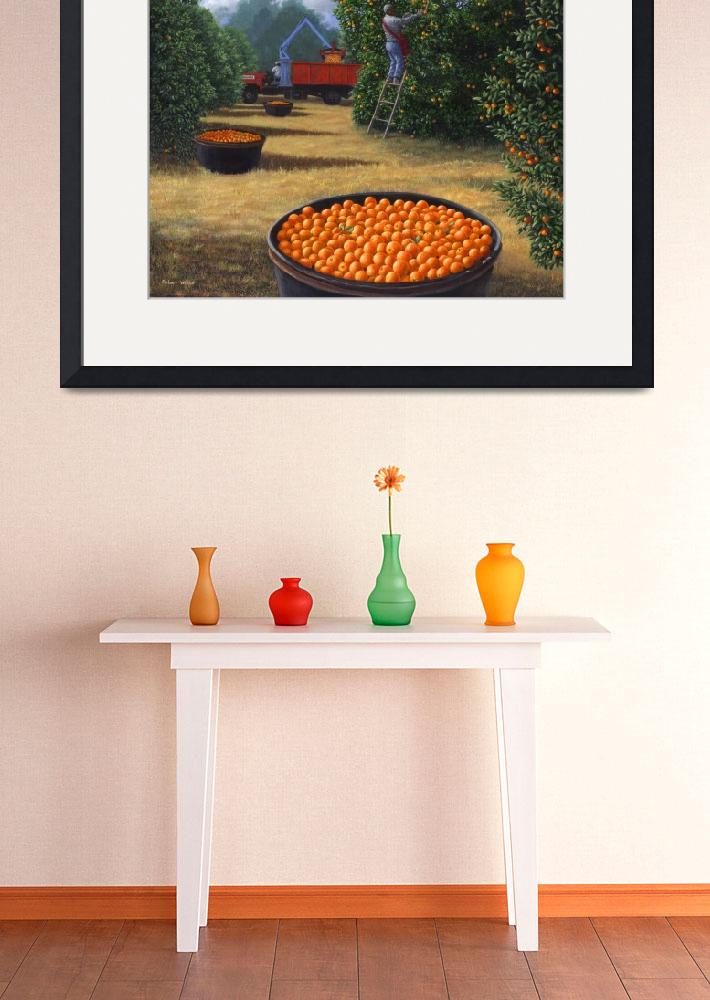 """""""Orange Harvest&quot  (2008) by RobertWince"""