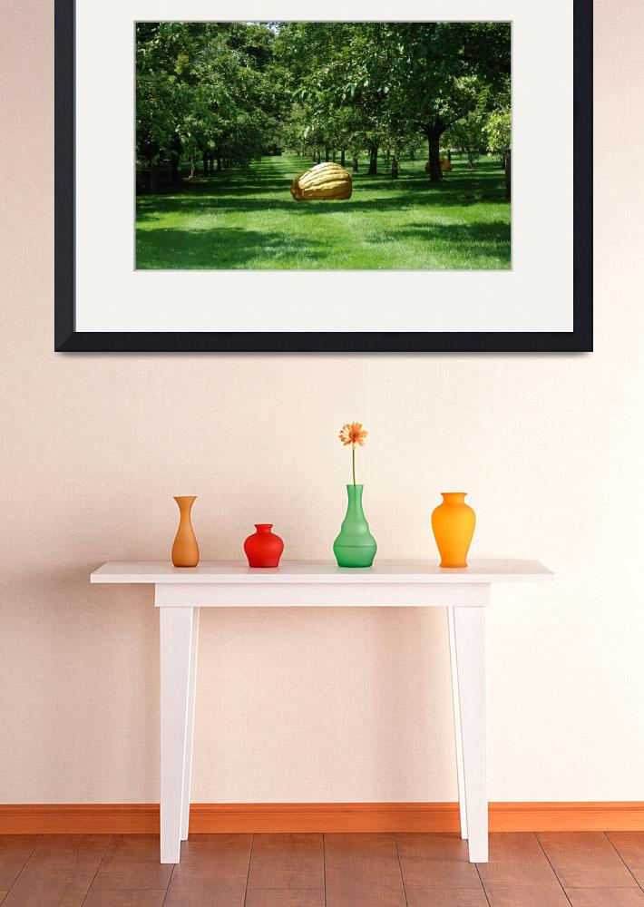 """""""Man-made pumpkins in the middle of apple-trees.&quot  (2009) by olegmit"""