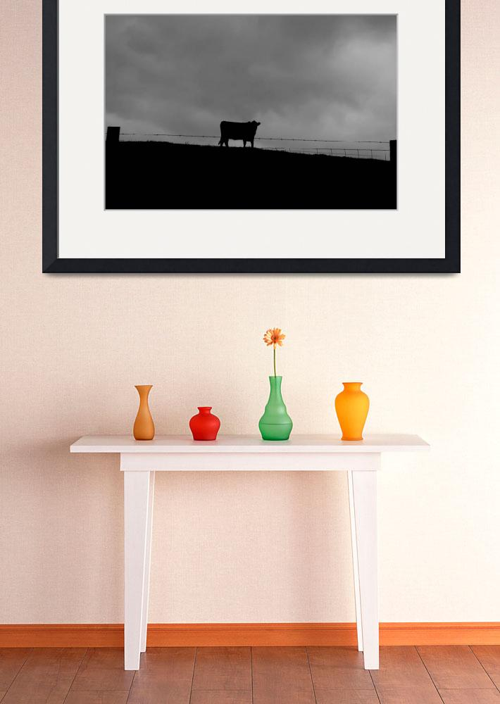"""""""Cow on a Hill""""  (2011) by douglilly"""