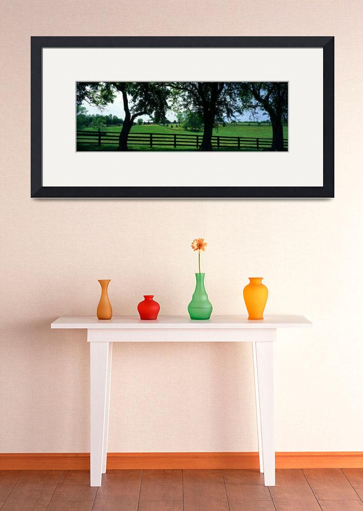 """""""Horse Farm KY""""  by Panoramic_Images"""