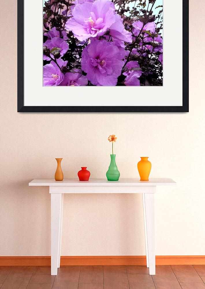 """""""Hot Pink flowers Bayterrace""""  (2013) by Lucine"""