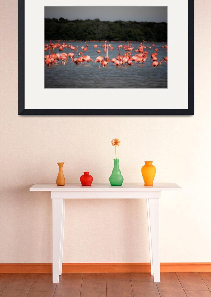 """""""Chillout with flamingos""""  (2018) by robertgrac"""