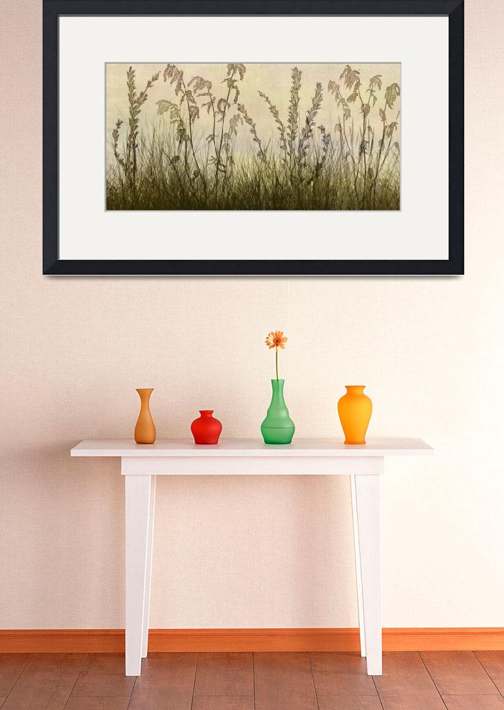 """""""Wildflower silhouettes Amber Yellow&quot  (2013) by CoraNiele"""