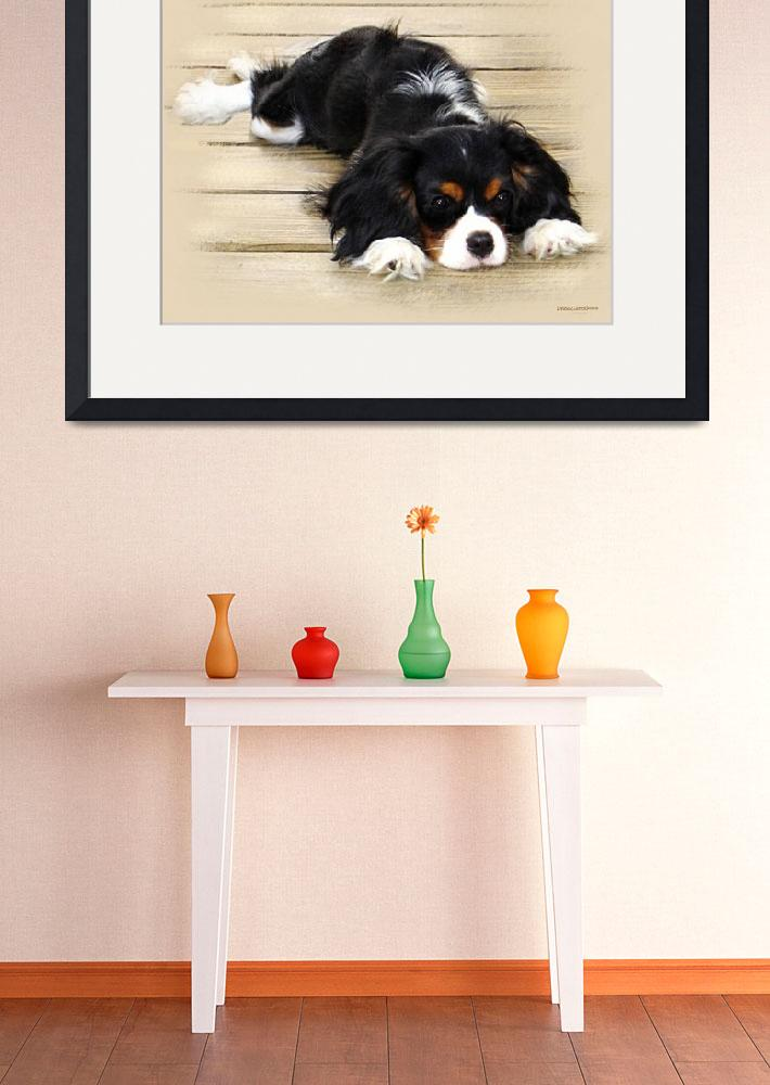 """Cavalier King Charles Spaniel&quot  (2009) by lindacarroll"