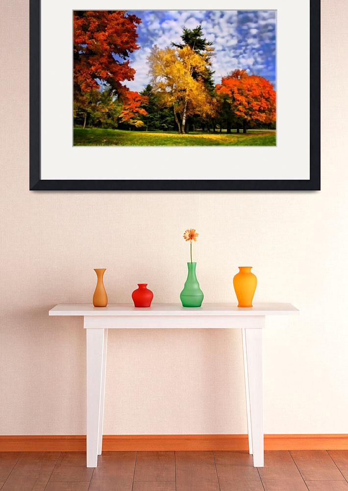"""""""A painterly look with fall colors&quot  by MikeDargaPhotography"""