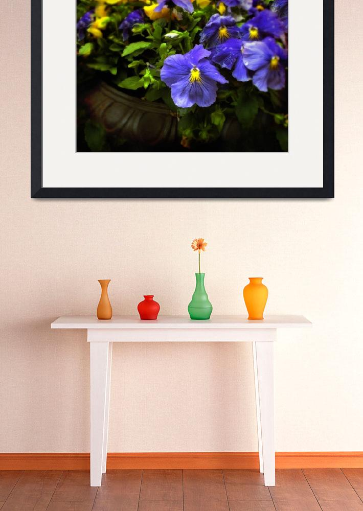 """""""Pansy Planter&quot  (2011) by JessicaJenney"""