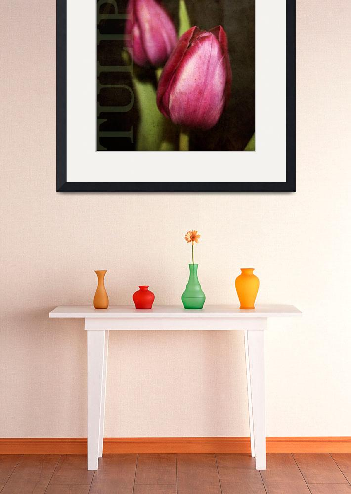 """""""Tulips&quot  by cathie10"""