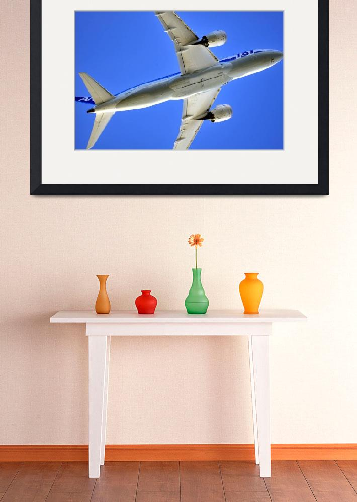 """""""B-787 Flyover""""  (2013) by JoaoPonces"""