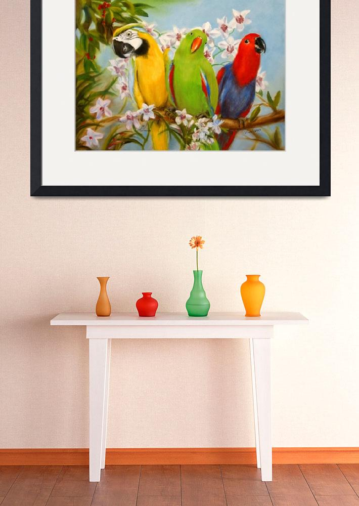 """The Three Tenors- Parrots and Orchids by Violano&quot  (2012) by stella"