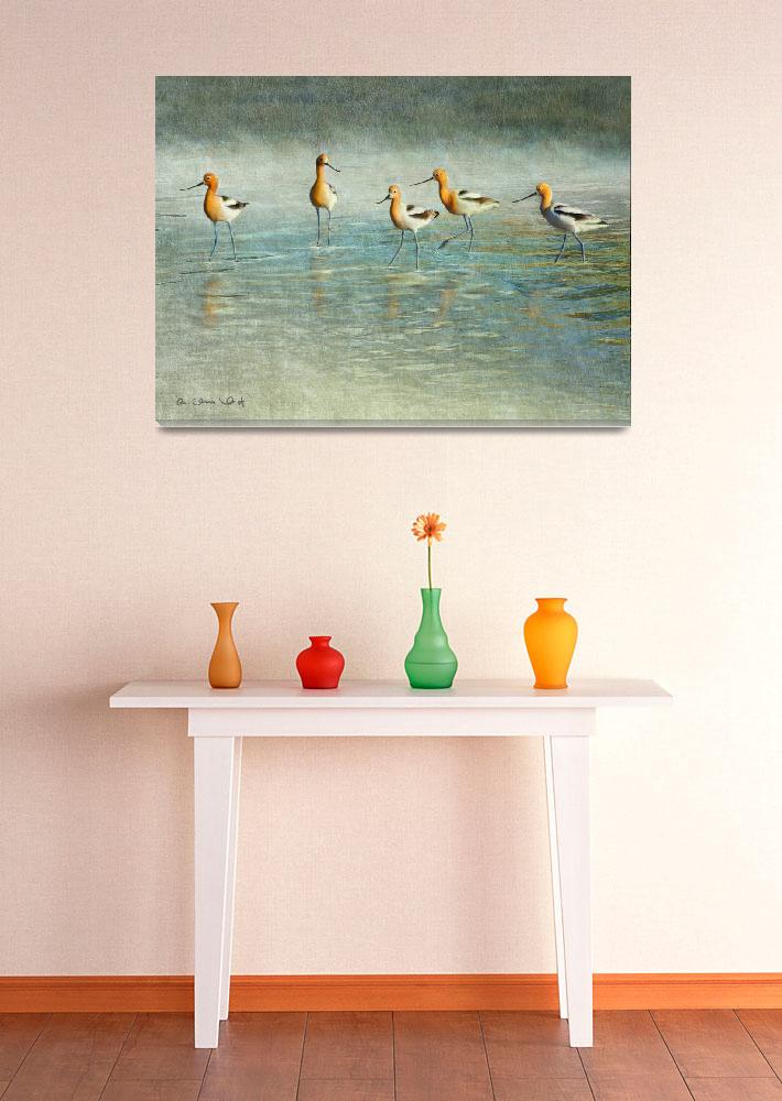 """""""just passing through / avocets&quot  (2010) by rchristophervest"""