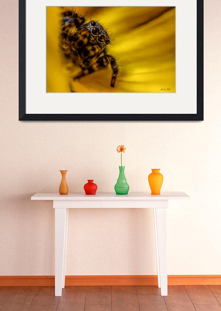 """""""Jumping spider""""  by Art_by_Lilia"""