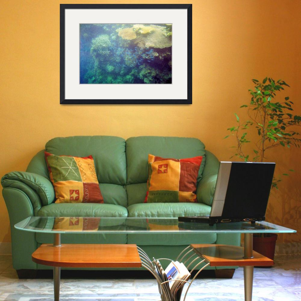 """""""Barrier Reef&quot  (2011) by biriart"""