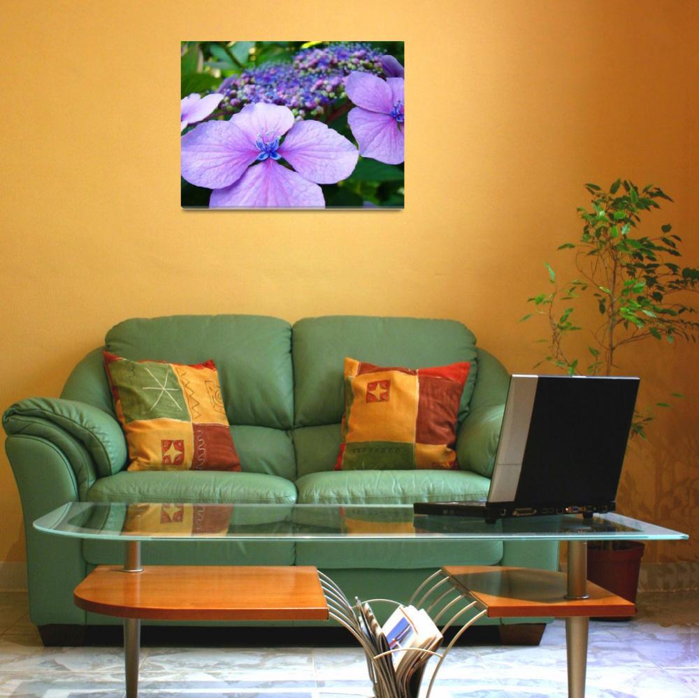 """Hydrangea FLOWERS Pink Purple Blue Botanical Art""  (2009) by BasleeTroutman"
