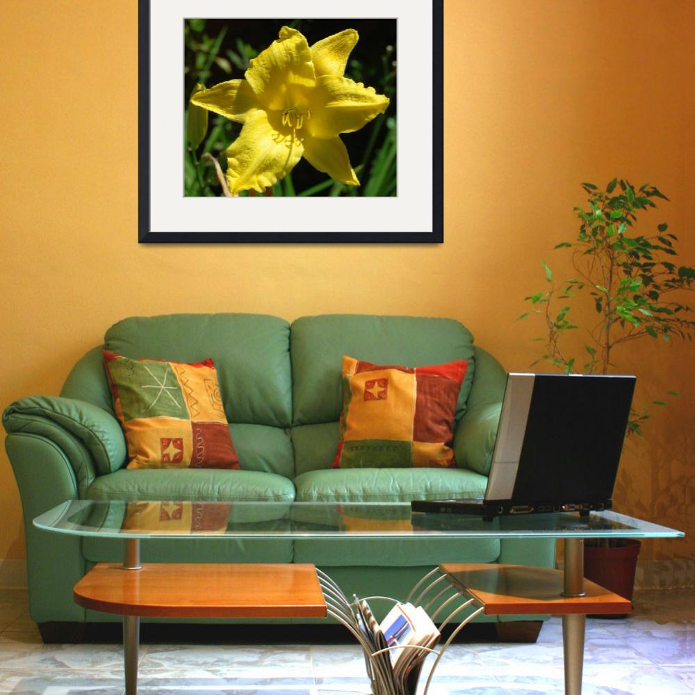 """Lemon Yellow Lily&quot  (2006) by budo"
