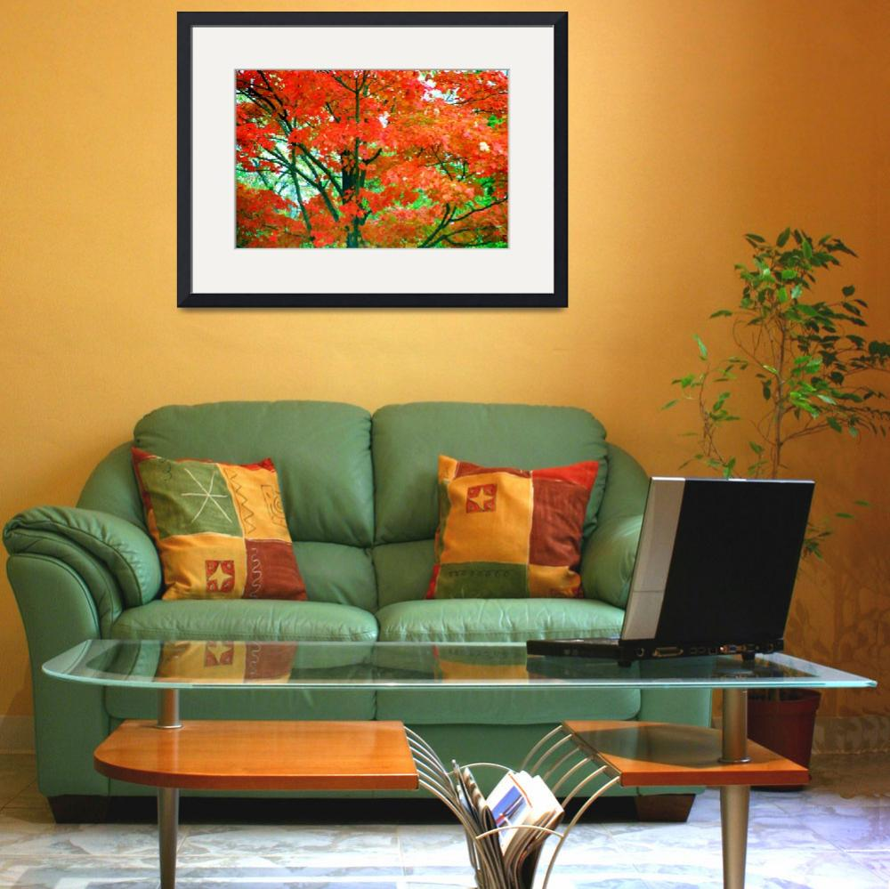 """""""Trees Explode In Colors Of Red, Orange, And Green""""  (1997) by MikeMBurkeDesigns"""
