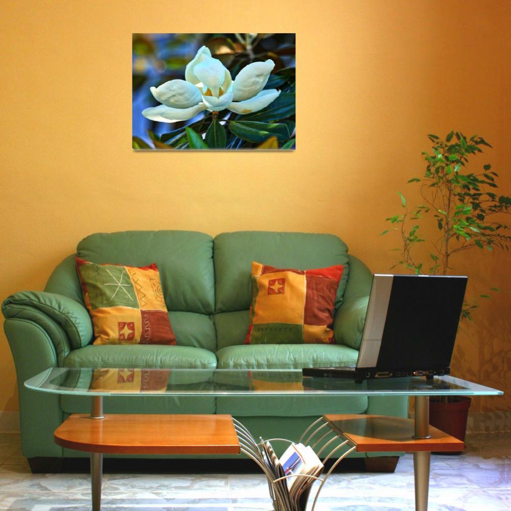 """""""Magnolia Elegance""""  by Groecar"""