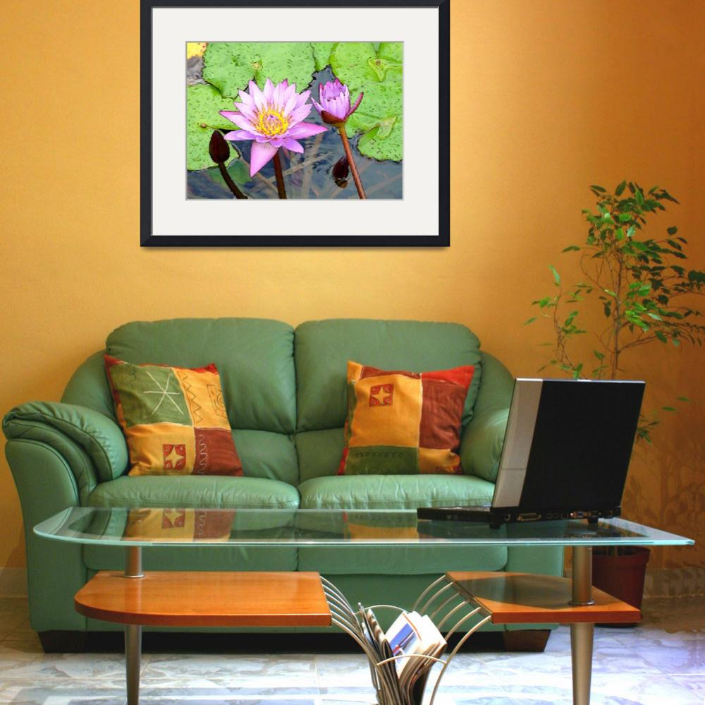 """Opening Flower Lilas&quot  (2010) by Caribbean-Digital-Art"