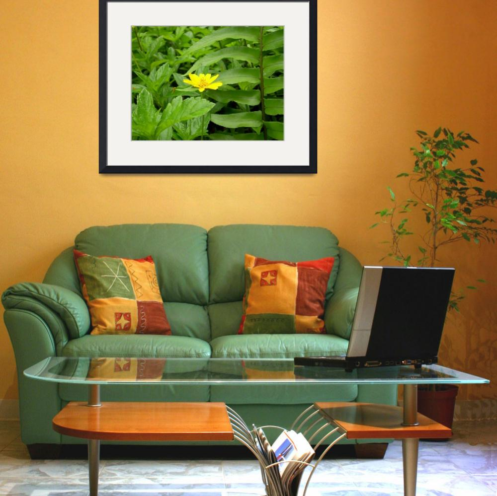 """""""Yellow Flower&quot  (2009) by SJPDesigns"""