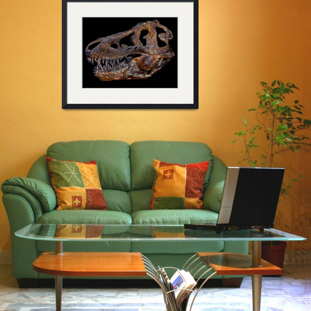"""""""A genuine fossilized skull of a T. Rex&quot  by stocktrekimages"""