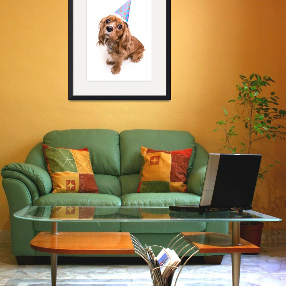 """""""Happy Birthday King Charles Spaniel Puppy&quot  (2013) by fielding"""