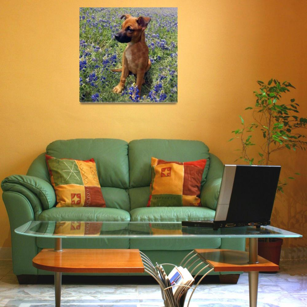 """""""Expressive Puppy and Bluebonnets Photo A19316&quot  (2016) by MasArtStudio"""
