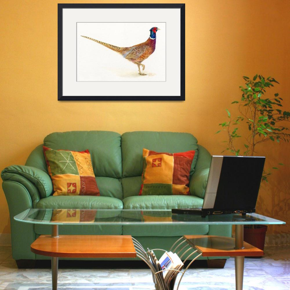 """""""pheasant&quot  (2013) by LisaMclaughlin"""
